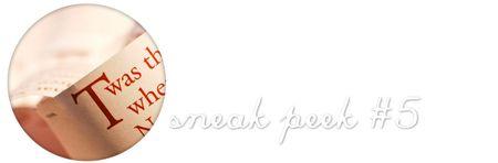 Sneakpeek5